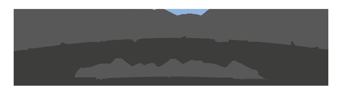 noodlecake studios logo